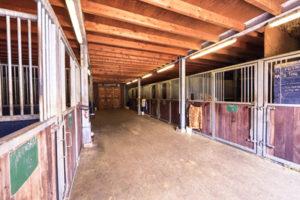 Foto van Paardenboxen