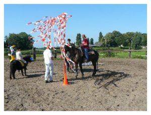 Foto van Paarden schriktraining