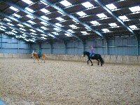 Foto bonnenbak stal pronk met paard en ruiter